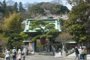 The approach to Hase-dera temple, near Hase station on the Enoden line
