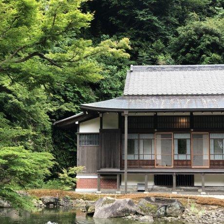Getting Lost in Kamakura