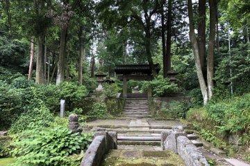 Kamakura in Summer