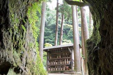 Quaint moss-covered entrance