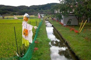 <p>Scarecrow along the river</p>