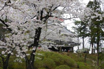 Kubota Castle at Senshu Park