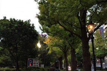 Yamashita Koen Street with gas lamps