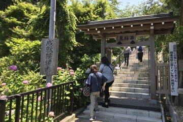 The approach to Joju-in during hydrangea season