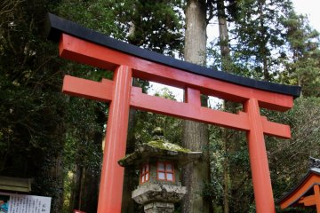 Torii are your gateway to another world
