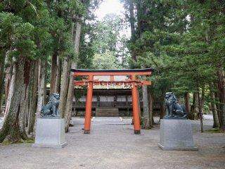 A torii found between the monasteries on Mount Koya
