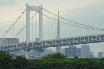 彩虹大桥后的东京塔