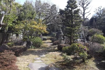The view of the garden from the Annex