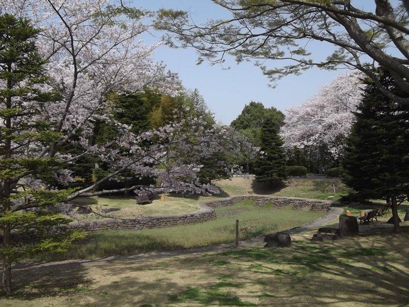 The pretty park