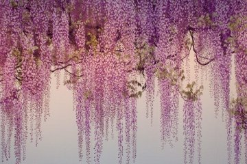 Yoshio Yoshimura Exhibition