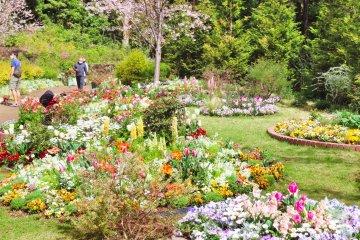 Satoyama Garden Display