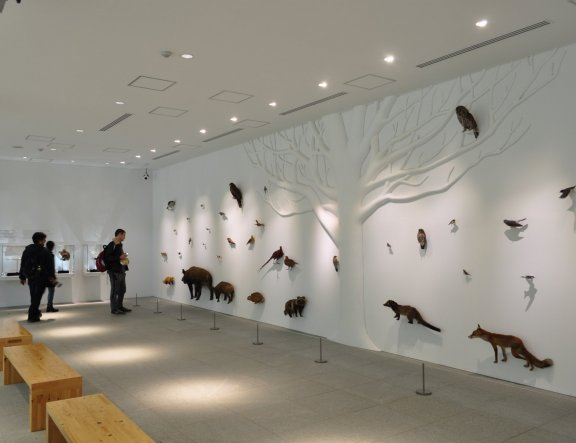 Hachioji City - Museums & Galleries
