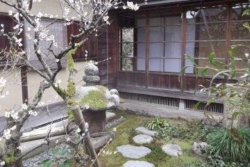 The garden at the Kurando Terashima House