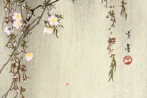 """An example of Watanabe Shotei's work - """" Two Birds and a Cherry Tree"""""""