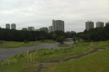 Overlooking the park
