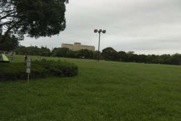 The Central area's greenness