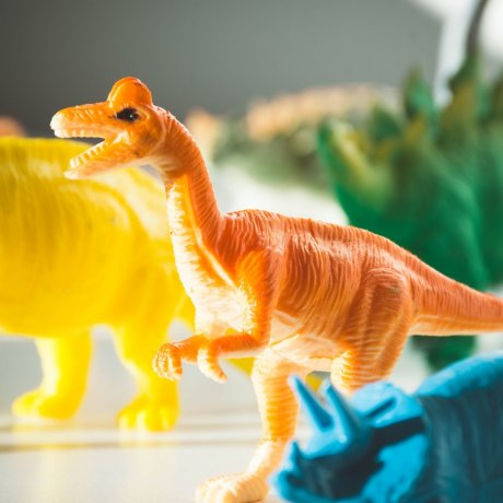 4 Destinations for Dinosaur Fans in Japan