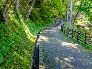 Одно из самых популярных мест для любования сакурой в Иватэ