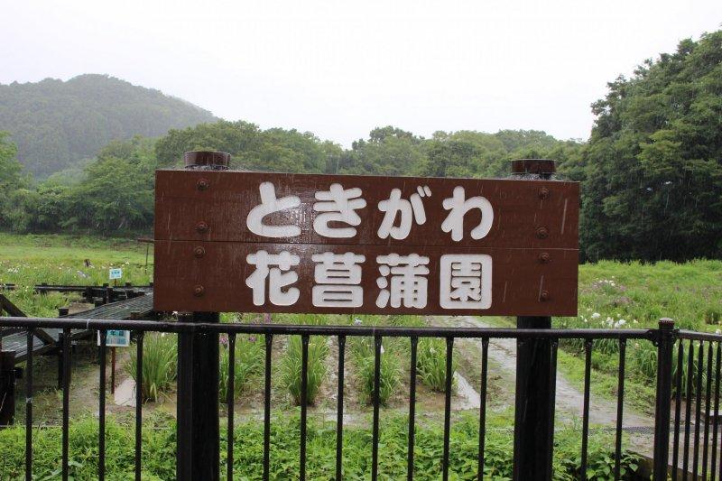 """""""Tokigawa Hanashobuen"""" Tokigawa Iris Garden"""
