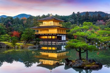 Kinkakuji is a work of art surrounded by nature.