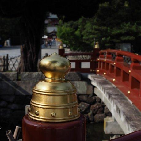 Golden Hour in Kamakura