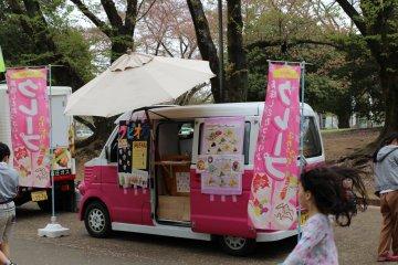 Inariyama Park Cherry Blossoms