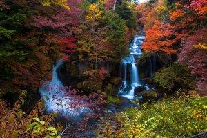 Ryuzu Falls is simply stunning in fall!