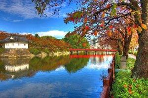 Vibrant colors around Odawara Castle