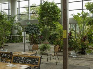 If you enter the garden through the building that houses the café you can enjoy this greenhouse on the second floor
