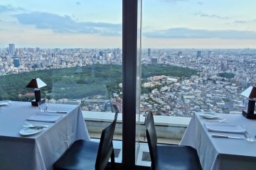 Breathtaking view of Tokyo taken in the early evening