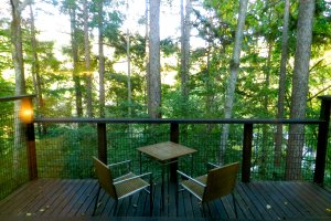 The private terrace overlooking the surrounding forest.