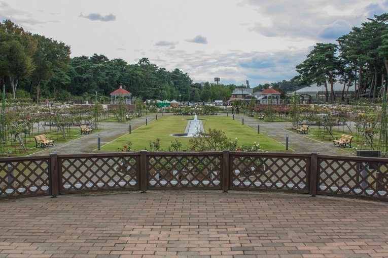 Công viên hoa hồng Maebashi