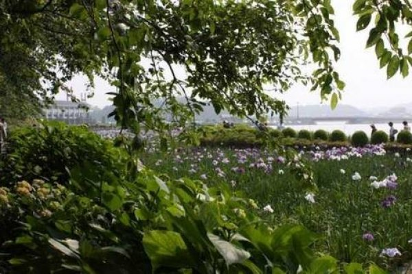 北潟湖の周囲には遊歩道が延びる