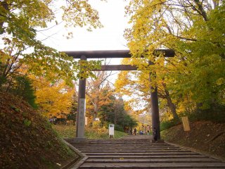 The entrance to the Hokkaido Jingu from Maruyama Park, which is covered by trees in their fall colour.