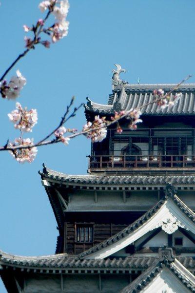 Hiroshima Castle - Hiroshima - Japan Travel - Préparez votre séjour