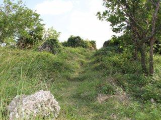 Đi theo những con đường mòn dẫn vào bãi cỏ để tìm đường đến vách đá có tầm nhìn ra đại dương và phía bắc Okinawa