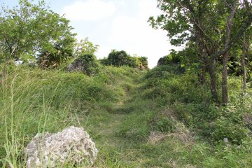 <p>Follow the foot trails worn into the grass to find the way to the cliff side views of the ocean and northern Okinawa</p>