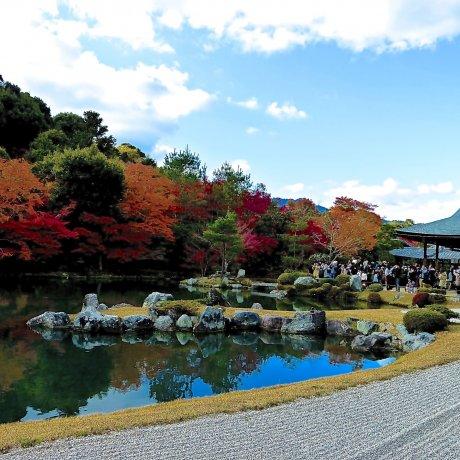 Taman Hojo Tenryu-ji Kyoto