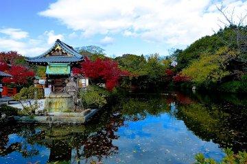 연못에 비친 푸른 하늘