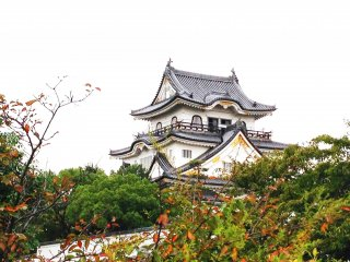 Glimpses of Kishiwada Castle as you approach from the street