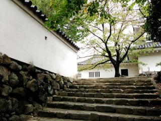 The Silent Stone Steps that winds its way to the main building at Kishiwada Castle