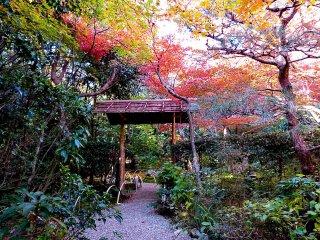 厭離庵の庭への入り口