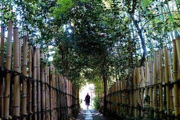 Kyoto Enri-an Hermitage
