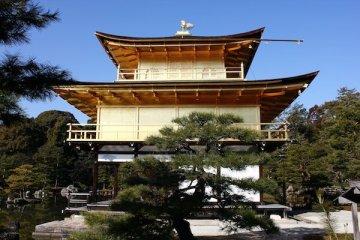 走入金閣寺內,穿過一段小路,就可以看到一片池水旁佇立著金碧輝煌的金閣寺