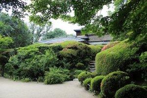 庭園から母屋を臨む。きれいに手入れされた庭がすばらしい
