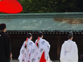 Not only bride and groom are perfectly dressed; the priest and the shrine's maidens ('miko' in Japanese),who lead the procession, look more than perfect, too.