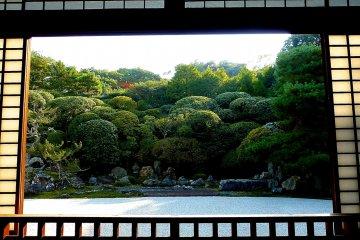 สวนสึรุคาเมะของคอนจิ-อินในเกียวโต