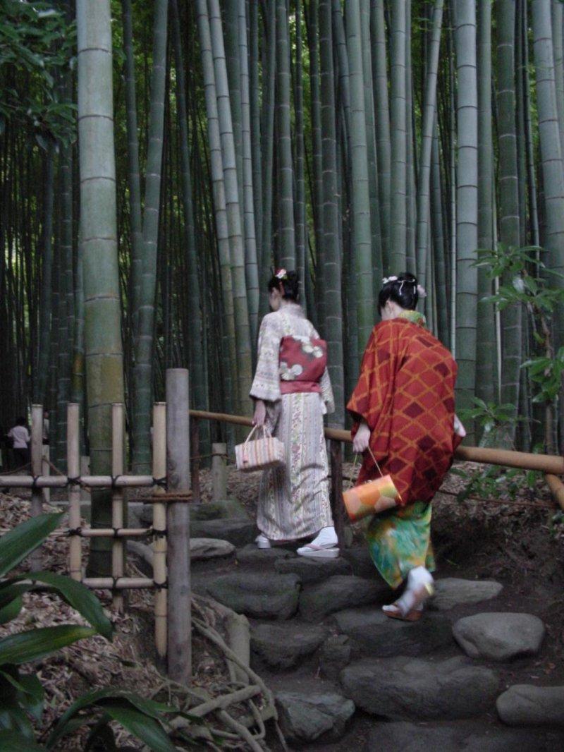 Entrance to Hokoku-ji Temple's sublime bamboo grove