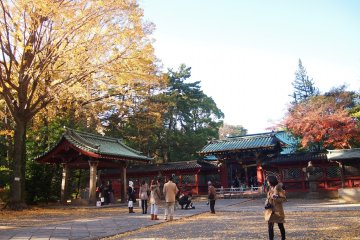 <p>Autumn leaves make the shrine look doubly beautiful.&nbsp;</p>