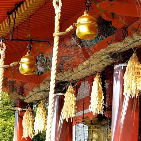 Kyoto Yasaka Shrine in the morning